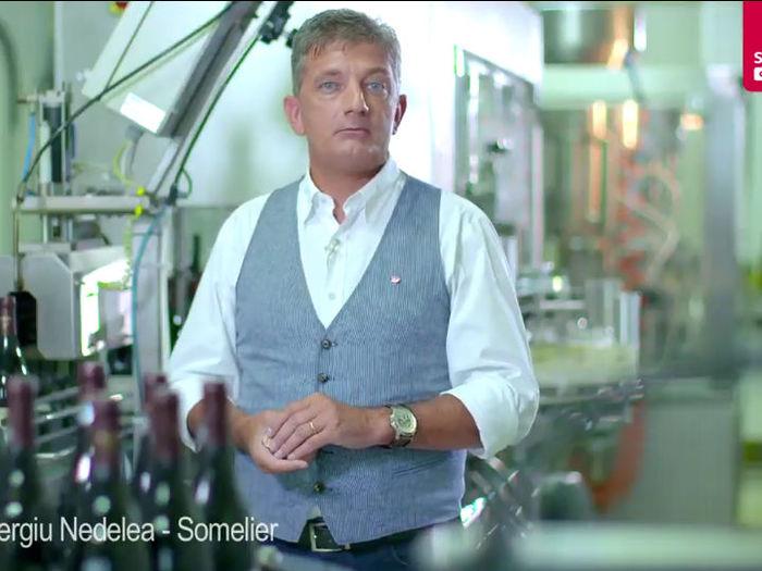 Imbutelierea vinului - Sergiu Nedelea